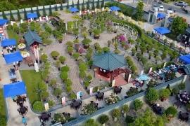 Vườn Bonsai Dona