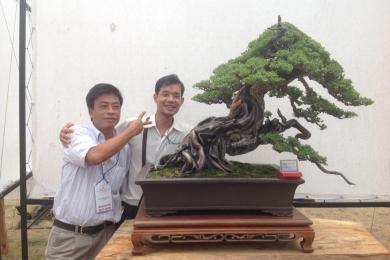 Bonsai Việt Nam đừng copy, sao chép...