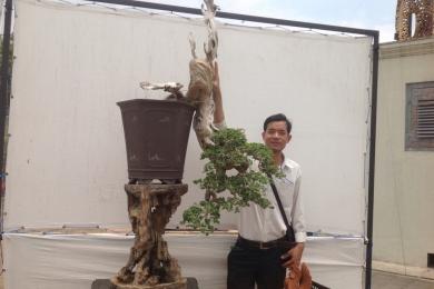 Ký sự cuộc phiêu lưu của cây Sam hương - Robert Steven